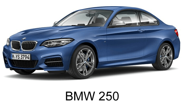 car BMW 250 for executive transportation in luxury category